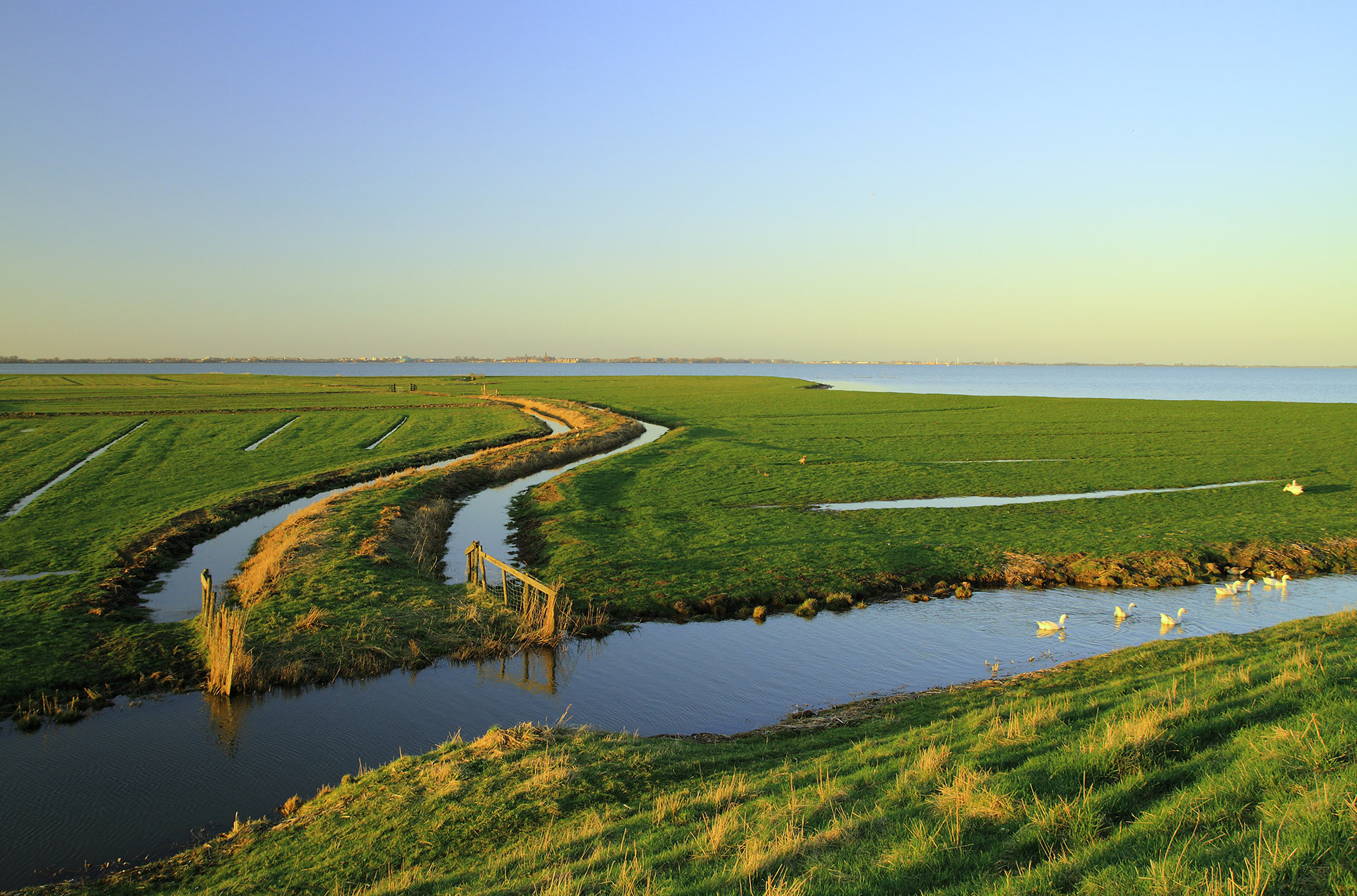Achtergrond afbeelding: Oostende
